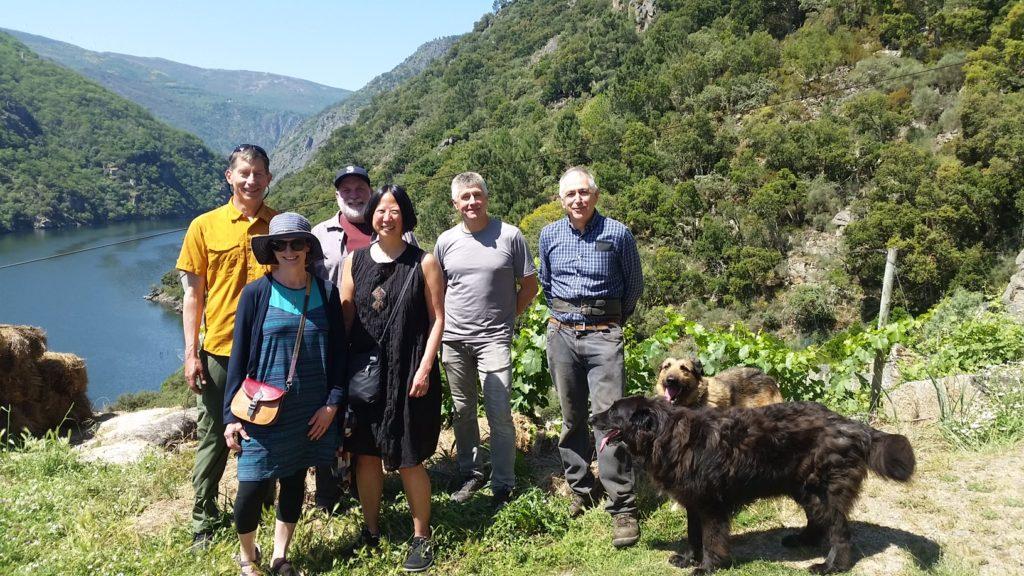 Silice Viticultores Sober Ribeira Sacra Galicia Spain