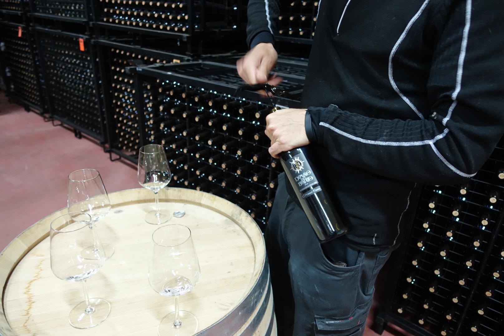 Zamora Toro and Sayago wine regions